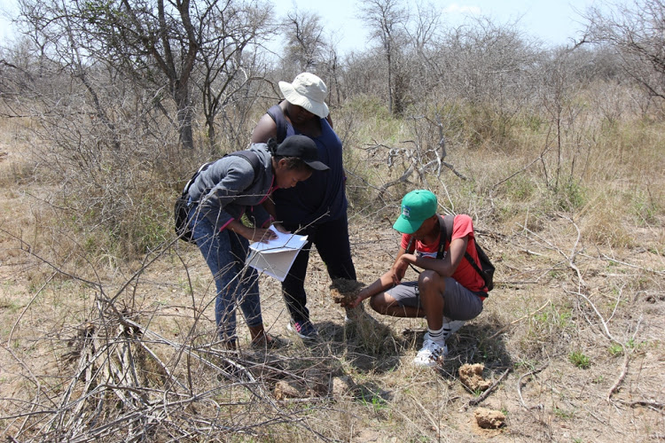 Students of the initiative doing fieldwork. Picture: SUPPLIED
