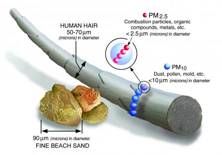 diagram showing the relative sized of particulate matter or PM 10 and PM 2.5